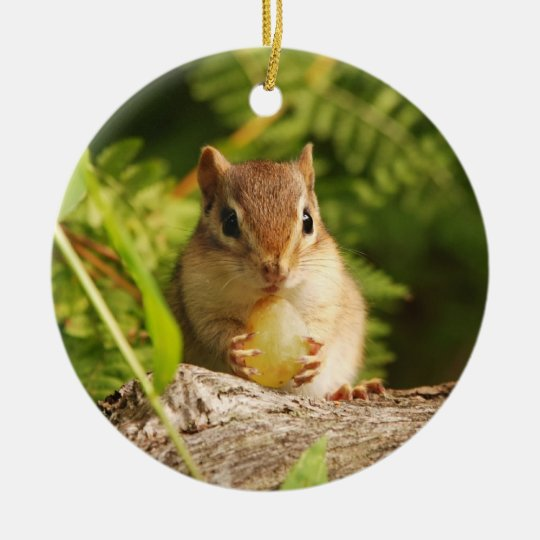 Cute Baby Chipmunk with Snack Ceramic Ornament