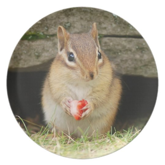 Cute Baby Chipmunk with Strawberry Melamine Plate