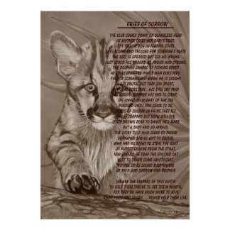 cute baby cougar kitten wildlife poem art poster