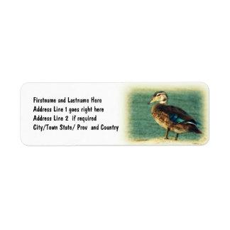 Cute Baby Duck Custom Return Address Labels