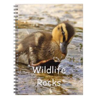 Cute Baby Duckling Notebook