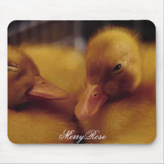 Cute Baby Ducks Mouse Pad