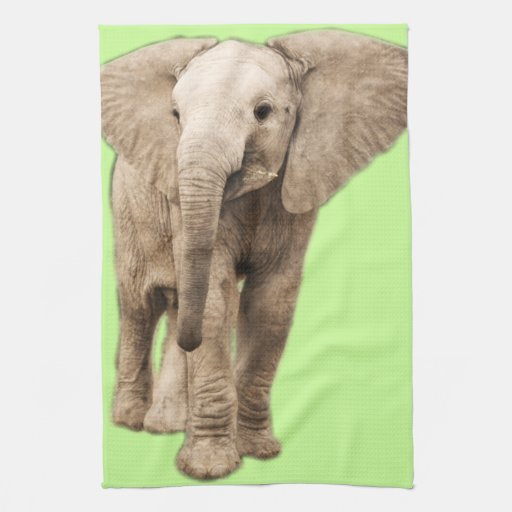 Cute Baby Elephant Kitchen Towel