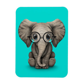 Cute Baby Elephant with Reading Glasses Blue Rectangle Magnets