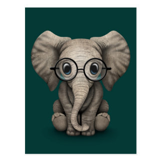 Cute Baby Elephant with Reading Glasses Teal Postcard