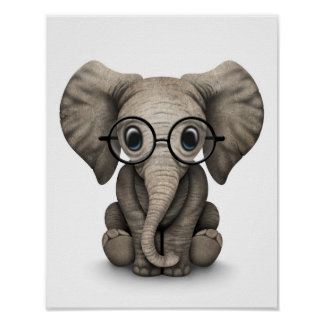 Cute Baby Elephant with Reading Glasses White Poster