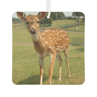 Cute Baby Fawn Deer Car Air Freshener