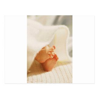 Cute Baby Feet Little Baby Feet Wrapped Blanket Postcard