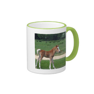 Cute Baby Foal Destiny Gifts Springtime Adorable Ringer Coffee Mug
