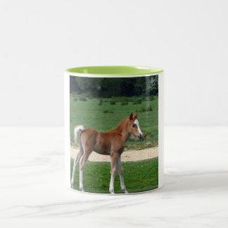 Cute Baby Foal Destiny Gifts Springtime Adorable Two-Tone Coffee Mug