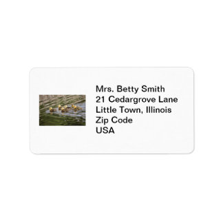 Cute Baby Geese Photo Label
