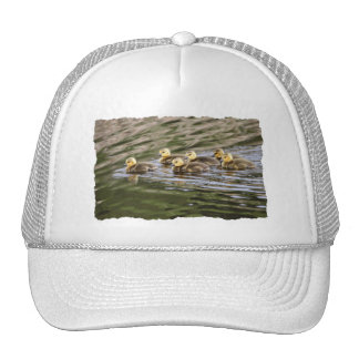 Cute Baby Geese Photo Trucker Hat