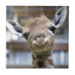 "cute baby giraffe tile<br><div class=""desc"">this cute baby giraffe is just adorable!!</div>"