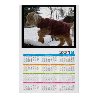 Cute Baby Goat 2018 to 2021 Poster Calendar
