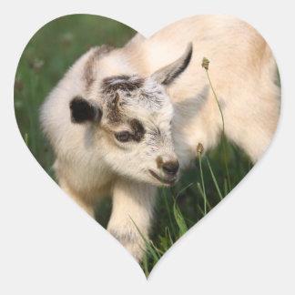 Cute Baby Goat Heart Sticker
