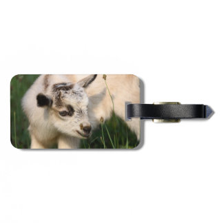 Cute Baby Goat Luggage Tag