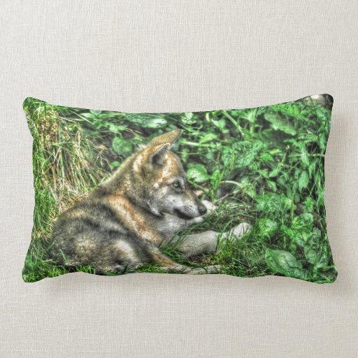 Cute Baby Grey Wolf Pup Wildlife Photo Throw Pillows
