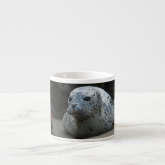 Cute Baby Harbor Seal looking up on  Beach Espresso Cup