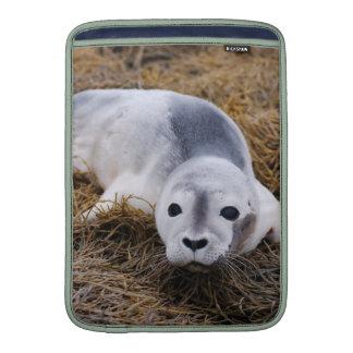 Cute Baby Harbor Seal MacBook Air Sleeve