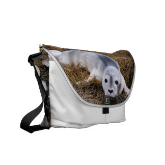 Cute Baby Harbor Seal Courier Bags