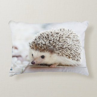 Cute Baby Hedgehog Accent Pillow