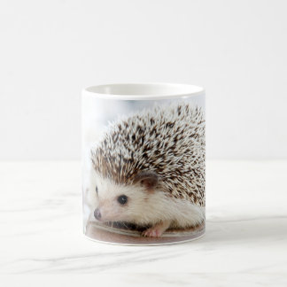 Cute Baby Hedgehog Animal Coffee Mug
