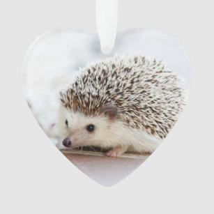 Hedgehog Ornaments Keepsake Ornaments Zazzle
