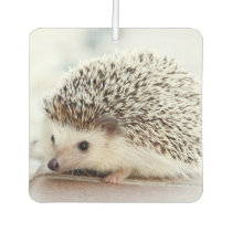 Cute Baby Hedgehog Car Air Freshener
