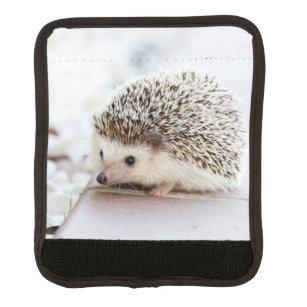 Cute Baby Hedgehog Handle Wrap
