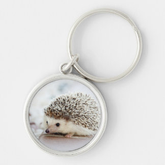 Cute Baby Hedgehog Keychain