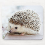 "Cute Baby Hedgehog Mouse Pad<br><div class=""desc"">Cute baby hedgehog portrait photograph on pale background.</div>"