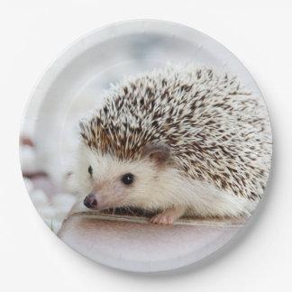 Cute Baby Hedgehog Paper Plate