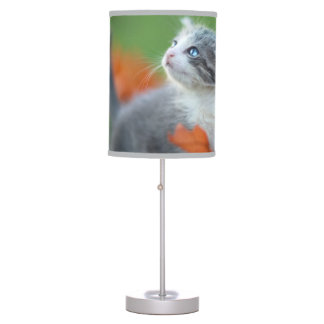 Cute Baby Kittens Playing Outdoors in the Grass Desk Lamp