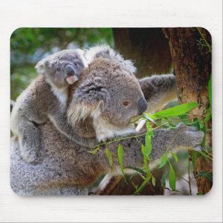 Cute baby koala bear with mom in a tree mouse pad