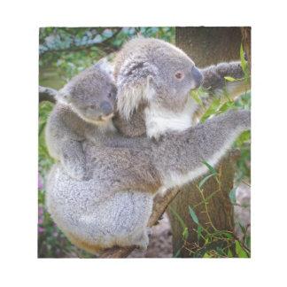 Cute baby koala bear with mom in a tree note pad