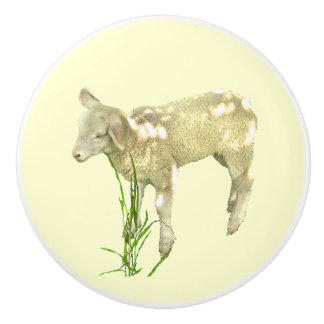 Cute Baby Lamb on Yellow Ceramic Knob