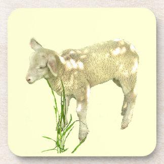Cute Baby Lamb on Yellow Coaster