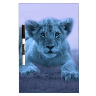 Cute baby lion cub dry erase whiteboards