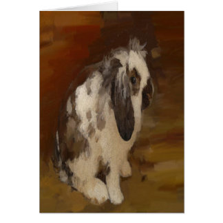 Cute, Baby Lop Eared Rabbit Cards