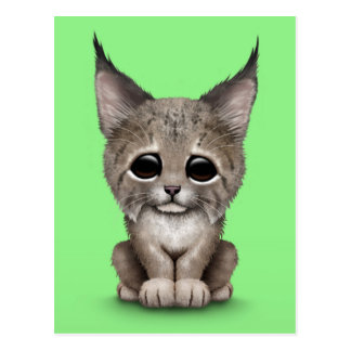 Cute Baby Lynx Cub on Green Postcard