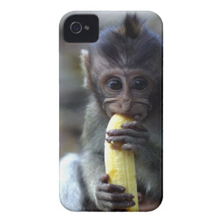Cute baby macaque monkey eating banana iPhone 4 Case-Mate case