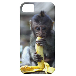 Cute baby macaque monkey eating banana iPhone SE/5/5s case