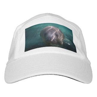 Cute baby manatee women's performance hat