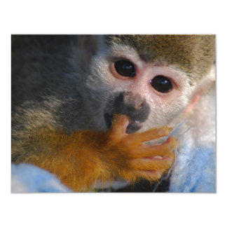 Cute Baby Monkey  Rescued Card