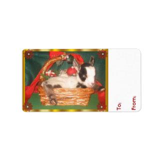 Cute Baby  Myotonic Goat Christmas Gift Tag