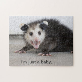 cute baby opossum photo puzzle