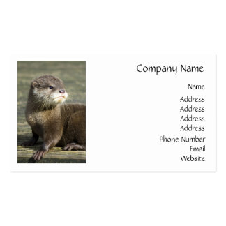 Cute Baby Otter Double-Sided Standard Business Cards (Pack Of 100)