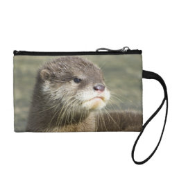 Cute Baby Otter Change Purse