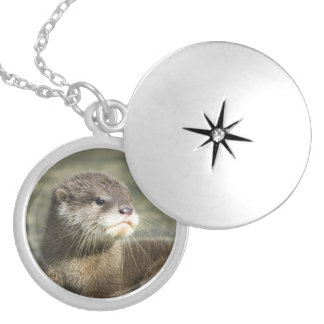 Cute Baby Otter Silver Plated Necklace