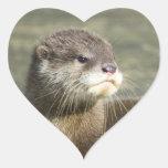 Cute Baby Otter Sticker